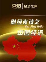 财经夜读之中国经济(一)
